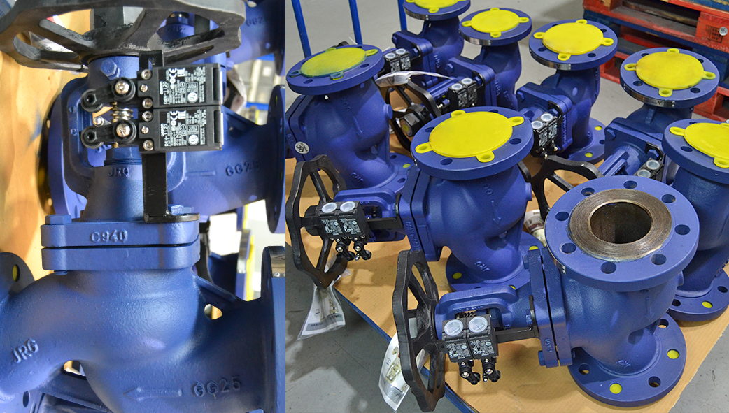 Bellows sealed valves with limit switches